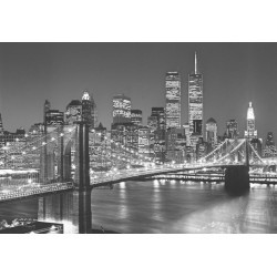FOTOTAPET BROOKLYN BRIDGE 114